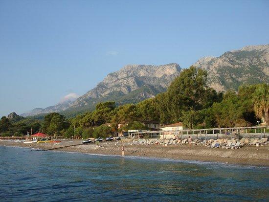 La Mer Art Hotel: Вид на территорию