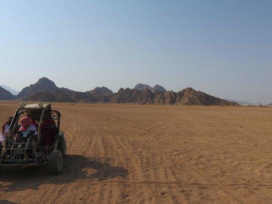 Mount Sinai: Beautiful!
