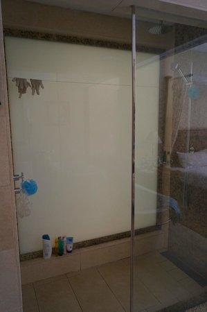 Maritim Resort & Spa Mauritius: shower