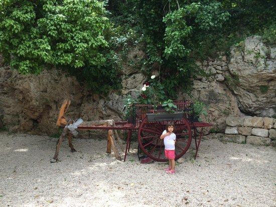 El Raco del Tosca: Jardín