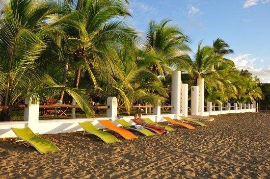 Bahia del Sol Beach Front Boutique Hotel: Der wunderschöne Strand direkt am Hotelgelände
