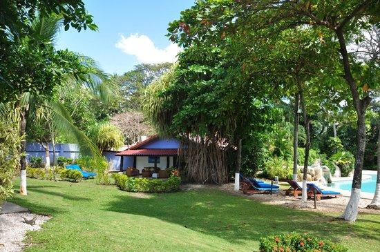Bahia del Sol Beach Front Boutique Hotel: Der wunderschöne Garten