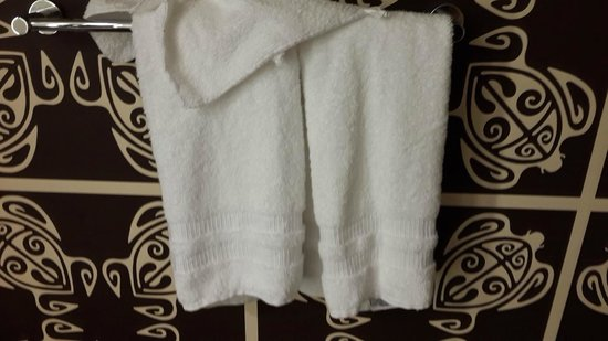 Disney's Polynesian Village Resort: Towels