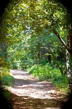 Barnsley Resort : walking trail