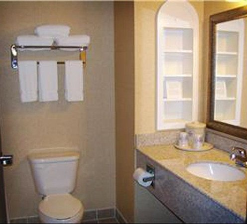 Holiday Inn Express Hotel & Suites Sedalia: Guest Bathroom