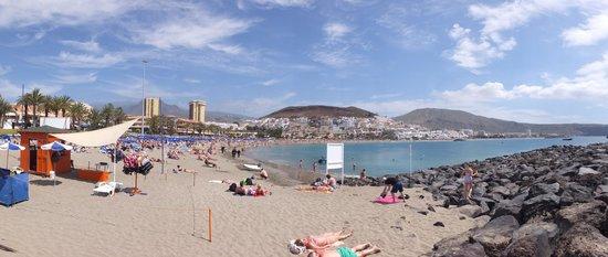Los Cristianos Harbour: panarama beach view