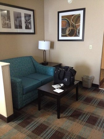 Comfort Suites New Orleans Airport : Nice new living room