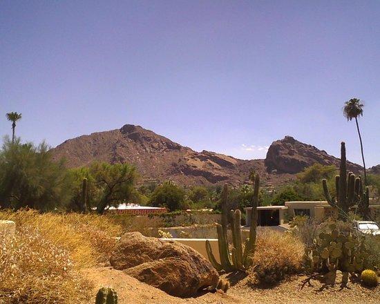 JW Marriott Scottsdale Camelback Inn Resort & Spa: View of Camelback Mountain from Room 423