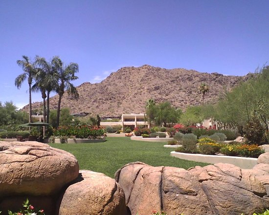 JW Marriott Scottsdale Camelback Inn Resort & Spa : Gardens by room 423