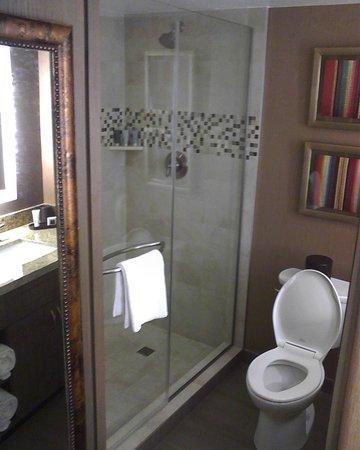 JW Marriott Scottsdale Camelback Inn Resort & Spa : Room 423 Shower