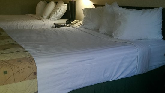 Best Western Springfield: Both beds were sunken in the middle but this one was especially bad.