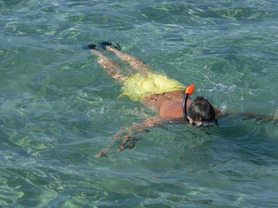 Sensimar Premier Le Reve: snorkelling off the jetty