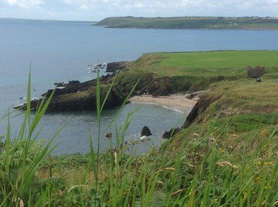 Ardmore Bed & Breakfast: Goat Island beach