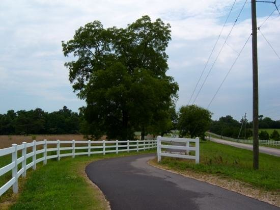 Neuse River Trail : you're not always on the river