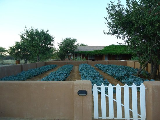 Damara Mopane Lodge: jardins potagers