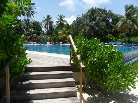 Meeru Island Resort & Spa : Swimming pool