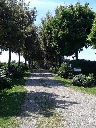 Moutan Botanical Center: gironzolando per il centro