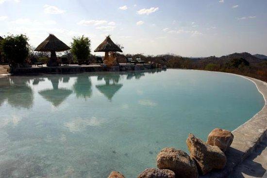Camp Amalinda : Pool
