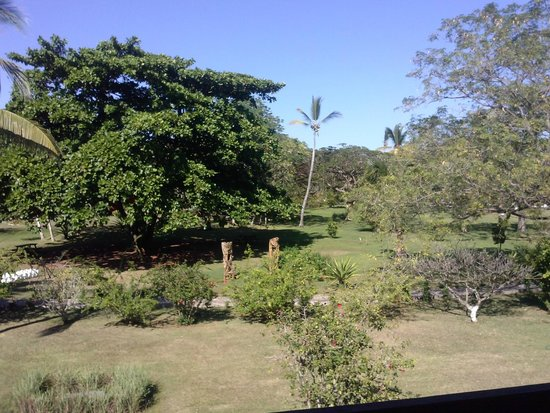 Andilana Beach Resort : parco hotel