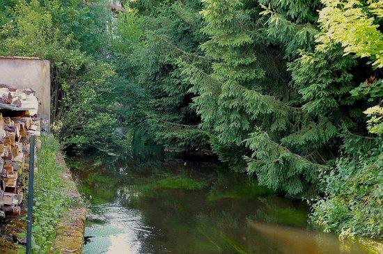 A l'Arbre Vert : Am Bachlauf