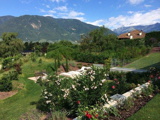 Hidalgo Suites: Garten