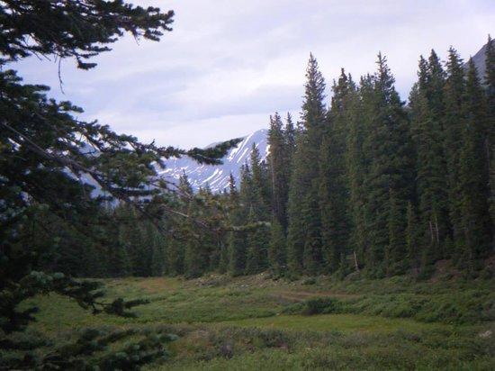 Molas Pass: Mountain View