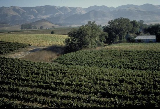 Holiday Inn Express Hotel & Suites Atascadero: San Luis Obispo Wine Region