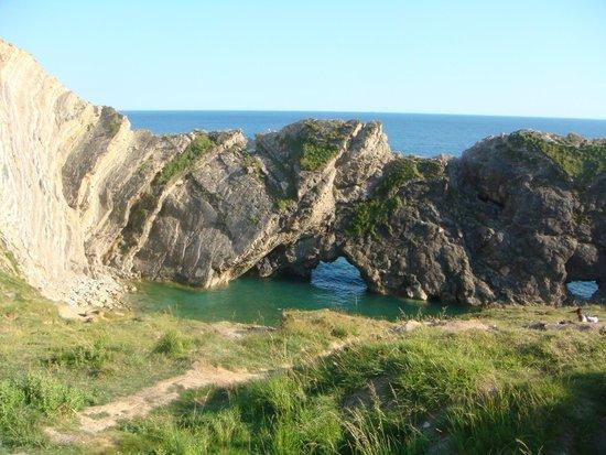 Bishops: Small Cove