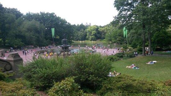 Central Park: Bellissimo!!!!!