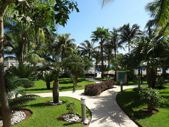 Hotel Riu Caribe: Grounds