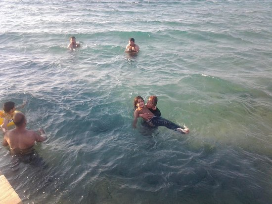Arab Divers: Very close to the beach