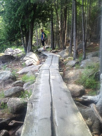 Asticou Inn: Path around Jordan Pond