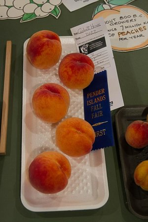 Corbett House Country Inn: John's prize winning peaches