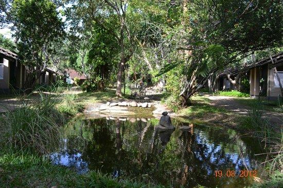 Sigiriya Village Hotel : Surroundings