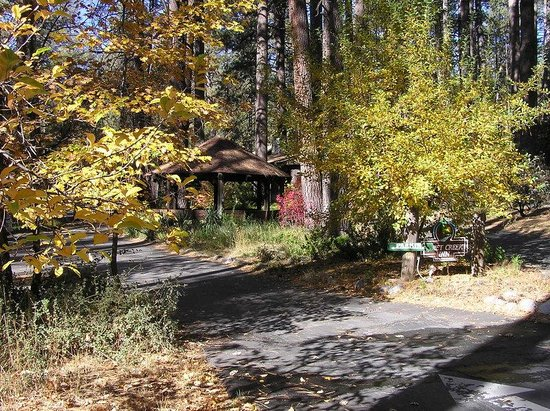 Quiet Creek Inn : Fall in Idyllwild brings breathtaking colors