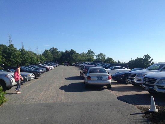 Castle Hill Inn : Full parking lot right in front of hotel
