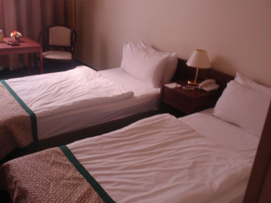 Hotel Hungaria City Center: our room