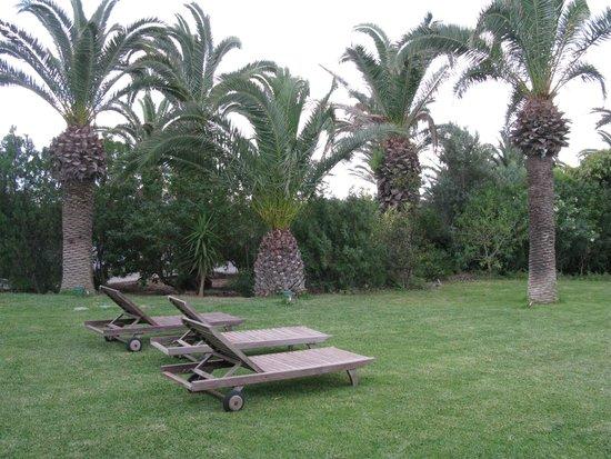 SENTIDO Phenicia : лужайка перед номером