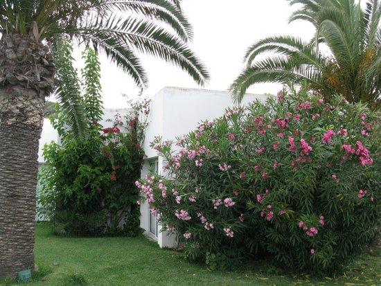 SENTIDO Phenicia: наше бунгало
