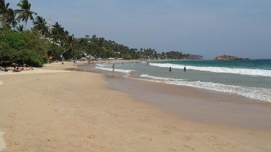 Paradise Beach Club: la plage