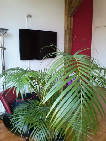 Hotel Restaurant Nieuw Beusink: Großer LCD-TV in der Suite