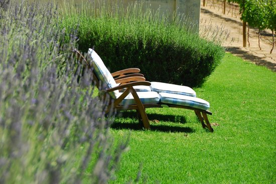 Auberge Clermont: Loungers in the sunshine