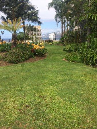 Hotel El Tope: Jardín lateral con vistas