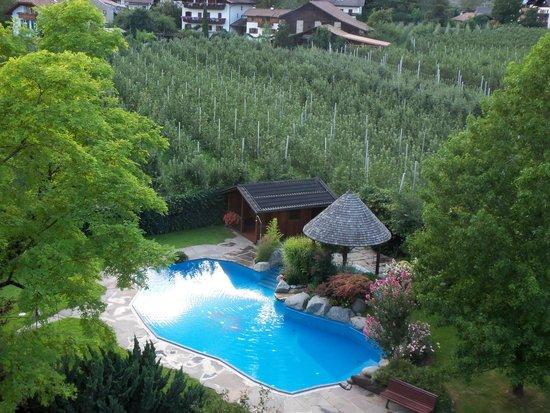 Hotel Wiesenhof: piscina vista dal terrazzo
