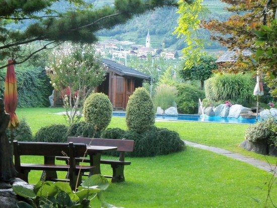 Hotel Wiesenhof: giardino con piscina