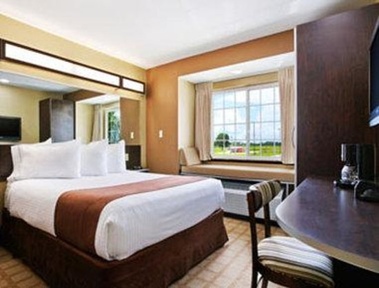 Microtel Inn & Suites by Wyndham Breaux Bridge: Standard Queen Bed Room