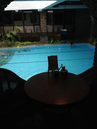 Hotel Land Gut Höhne: Swimming-pool from the pool bar