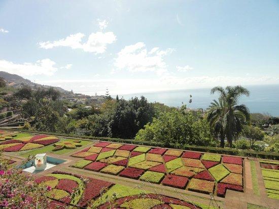 Madeira Botanical Garden : jardin botanique, Funchal