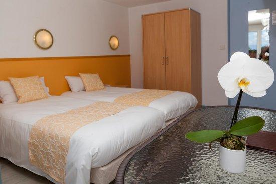 Hotel Cote Sud Leman: chambre twin