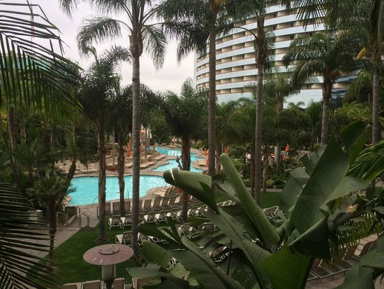 Marriott Marquis San Diego Marina : Beautifully landscaped pool area--very resort-like